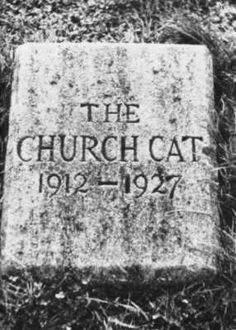 Kitten found outside the priests' entrance who spent the next 15 years as 'Church Cat'.