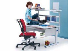 Moll Champion íróasztal funkció bővítés