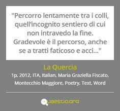 """""""La Quercia"""" (2012) #MariaGraziellaFiscato #MontecchioMaggiore #ITA #Text #Poetry #Italiano #Word https://quaestio.org/la-quercia"""