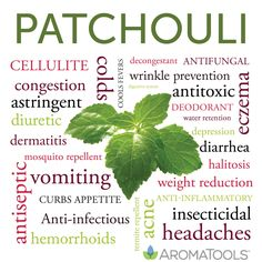 Call for testimonials! We are working on creating more Premium Sample Cards to help you share as many oils as possible! Visit our blog http://wp.me/p1JDCk-hq to submit your own meaningful patchouli testimonial. If we use your testimonial on our new Patchouli Premium Sample Cards http://bit.ly/LSpiv0, we will send you a packet of them for free once they are printed.