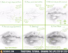 Traditional Tutorial: Drawing the Lips Step by StepArtist: Tim Von Rueden (vonn)Lips are considered one of the more difficult facial features to capture. This step by step will help you overcome that and then watch the full, real time tutorial on drawing the lips here: https://cgcookie.com/course/facial-features/