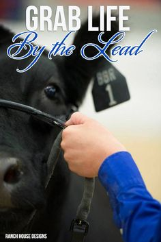 Grab Life By The Lead - Ranch House Designs Livestock Motivation