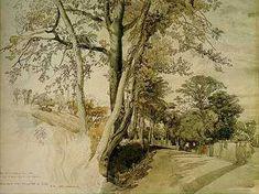 Pre Raphaelite Art: John Ruskin - Trees Study, perhaps at Ambleside, 1847 John Everett Millais, Pier Paolo Pasolini, Tree Study, John Ruskin, Andrew Wyeth, Landscape Drawings, Watercolor Landscape, Landscape Art, Landscape Paintings