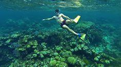 Snorkeling in Caye Caulker Belize