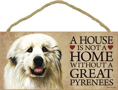 A house truly is not a home without a Great Pyrenees!
