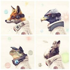 Star Fox Star Team Legends Of Lylat T-Shirts and Prints Star Fox, Video Game Decor, Video Game Art, Video Games, Viewtiful Joe, Retro Game, Fox Character, Barrel Roll, Fox Collection