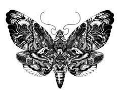 Wildlife part 2 by iain macarthur, via Behance