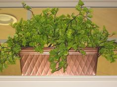 Simple Copper Tin, poured small river stones inside and stuck the greenery into stones to hold