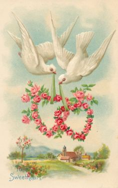 Doves Lower Valentines of Roses to Countryside   eBay