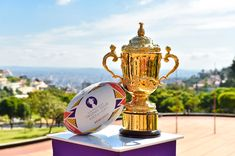JAPAN – Get ready for some early starts as the ninth Rugby World Cup starts in Japan, and we have you covered with how to watch and follow. Go Bokke, Rugby World Cup, The Nines, Need To Know, Everything, Nfl, Japan, In This Moment, Sports