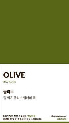 Color of today: Olive디자인빛의 작은 프로젝트 오늘의색은 하루에 한 빛깔, 아름다운 색과 재미있는 색... Colour Pallete, Color Schemes, Color Patterns, Pantone Colour Palettes, Pantone Color, Paint Sample Cards, Olives, Web Design, Paint Colors For Home