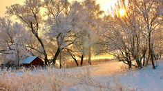 Romania Winter by skyzorR