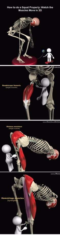 Tight Hip Flexors , check more review of how to unlock Your hip flexors - Pros and Cons