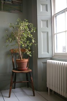 sash window, original shutters, lovely radiator...but someone water that plant!