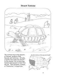 FREE 28 Page Coloring Book~ Filled with interesting facts and maps that helps bring home the importance of taking care of the environment!