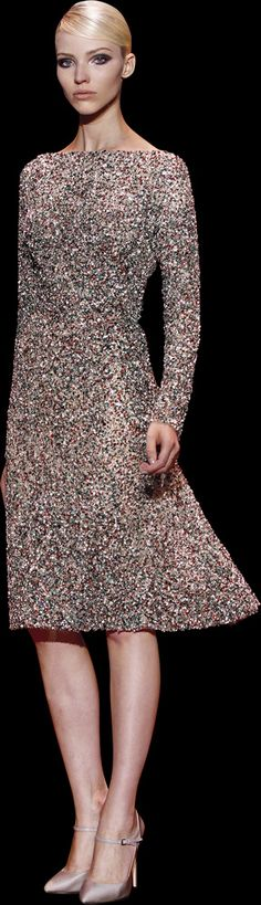ELIE SAAB - Haute Couture - Fall Winter 2013-2014 (for amy)