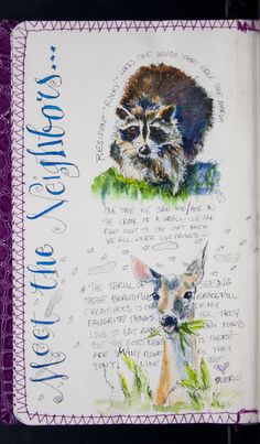 The Sketchbook Project: Pam Brickell. you can page through a lovely nature journal sketchbook. Sketch Journal, Artist Journal, Art Journal Pages, Art Journals, Sketchbook Project, Sketchbook Pages, Sketchbook Inspiration, Art Journal Inspiration, Moleskine