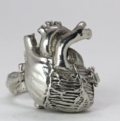 Hey, I found this really awesome Etsy listing at https://www.etsy.com/listing/154505231/poison-anatomical-heart-ring