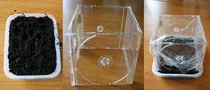 CD-Hüllen-Treibhaus selber bauen