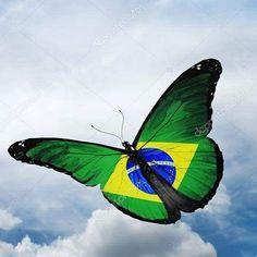 822 Melhores Imagens De Bandeiras Do Brasil Em 2020