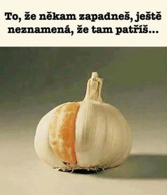 That is orange and garlic Pictures With Deep Meaning, Meaningful Pictures, Psychic Readings, True Words, Food For Thought, Garlic, Funny Memes, Inspirational Quotes, Motivational Quotes