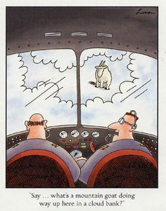 """Say...what's a mountain goat doing way up here in a cloud bank?"" - Gary Larson                                                                                                                                                                                 More"