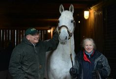 Silver Charm arrives at Old Friends Kentucky, 12/1/14. Here he is with Michael Blowen and Sandy Hatfield, two people who were instrumental at bringing the Hall of Famer back to America. (Photo by Laura Battles)