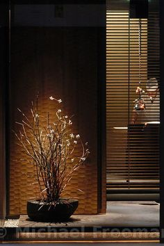 Entrance to An Restaurant, Daikanyama, Tokyo, Japan Japanese Interior Design, Asian Interior, Japanese Design, Japan Architecture, Interior Architecture, Design Moderne, Japan Fashion, Japanese Modern, Japanese House