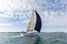 Image result for hanse 315 sailing
