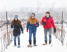 Explore Coffin Ridge Winery in the winter by snowshoe and take in the views of rolling hills and Georgian Bay. Located near Meaford, Ontario Snowshoe, Wine And Spirits, Wine Making, Georgian, A Boutique, Coffin, Ontario, Tourism, Turismo