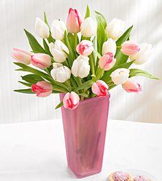 white and blush pink tulips