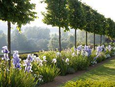 Depósito Santa Mariah: Jardins Que Brilham Ao Luar!