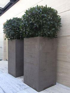 Japanese Design, Planter Pots, Exterior, Gardening, Green, Home Decor, Ideas, Potted Garden, Plant Pots
