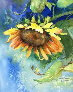 Title: Droopy Sunflower A giclee print from my original watercolor painting of a large sunflower with lots of rich color. Measures Comes complete with a white mat, backing board and clear bag for protection. Actual print size is 8 x 11 Flower Painting, Art Painting, Watercolor Print, Watercolor Sunflower, Painting, Art, Original Watercolor Painting, Original Watercolors, Floral Watercolor