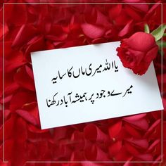Father And Daughter Love, Dear Mom And Dad, I Love My Parents, Love U Mom, Funny Quotes In Urdu, Quran Quotes Love, Quran Quotes Inspirational, Best Islamic Quotes, Islamic Teachings