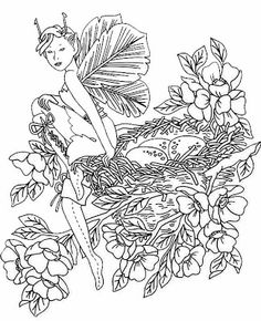 Image Detail For Fairy Coloring Pages 2 187 Printable