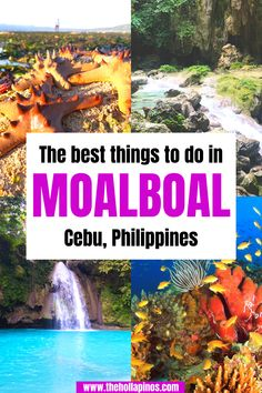 The best things to do in Moalboal Cebu, one of the underrated travel destinations in the Philippines - Philipines travel, Phillipine travel. Great travel tips on where to travel in the Philippines, the best travel spots in Moalboal Philippines and experience the sardines run. #2020traveldestinations #asiadestinations #beachvacations #philippines Top Places To Travel, Top Travel Destinations, Beautiful Places To Travel, Budget Travel, Travel Tips, Philippines Destinations, Philippines Vacation, Philippines Travel Guide, Affordable Vacations