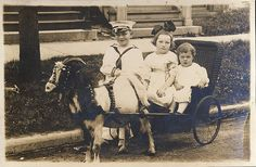 vintage goat cart photos | Goat Cart - a gallery on Flickr