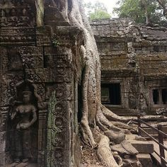 Ancient Ruin of Angkor Thom