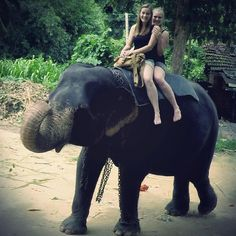 Love the time here in Sri Lanka so much. Riding an elephant was one of the most great experiences the last days. He was so cute :D and so big. Seems like he's always smiling #srilanka #backpacking #greattime #elephantriding #justloveit #traveling #memories