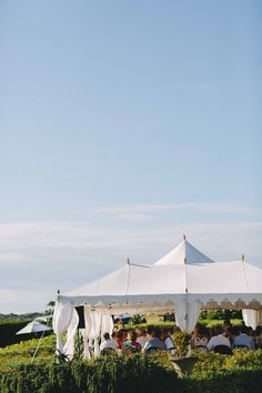 Jess and Micheal - Church Bay Estate - Coco Lily Events Gazebo, Reception, Lily, Outdoor Structures, Events, Kiosk, Pavilion, Orchids, Receptions
