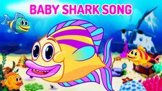 Tap your feet along with Baby Shark and his family, to the jolly music of Baby Shark Song.