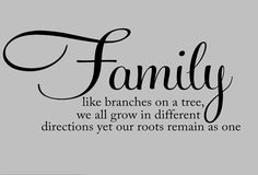 Family Saying Vinyl Lettering Wall Words Decal by OZAVinylGraphics on Etsy Family Wall Quotes, Vinyl Wall Quotes, Family Sayings, Family Reunion Photos, Document Safe, Fireproof Quotes, Word Block, Family Room Decorating, Word Pictures