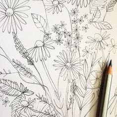 It's all about drawing flowers today. by paula mills illustration, via Flickr
