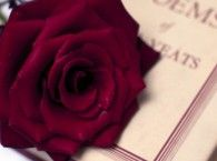 most romantic quotes from literatures!!!