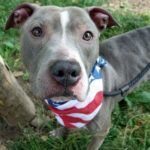 MIKE – A1005773