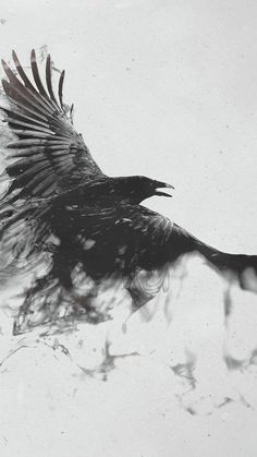 720x1280 Wallpaper raven, bird, flying, smoke, black white