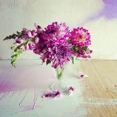 Freedom NZ Instagram | Lu Diamond Floral Workshop