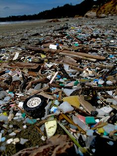 Beach invasion - Otter Rock, Oregon - Plastic is as ubiquitous as sand. This was from about a year before the Japanese Tsunami. It's the normal everyday state of the ocean not even the aftermath of a catastrophe | Photo by Jason Karn on Flickr |
