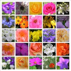 Flower mosaic print  bright colorful by NewCreatioNZ on Etsy, $20.00